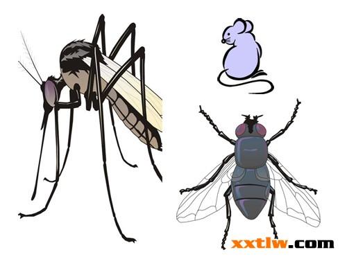 灭蚊蝇卡通宣传图片