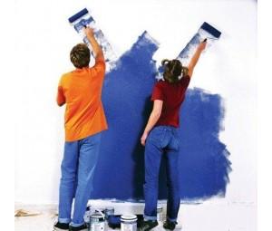 生态型彩色负离子内墙干粉涂料的研究与应用