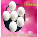 95氧化锆球-陶瓷球-氧化铝球-砂磨机锆球-球磨机磨珠