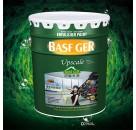 巴斯夫强效抗菌自洁墙面漆乳胶漆刷墙漆内墙漆