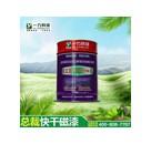 长期出售优质醇酸快干磁漆 长沙一力直供18674858978