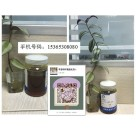 高性能专业品质固化剂产品650聚酰胺固化剂苏州亨思特公司