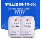 湖南益阳专业供应宁钛钛白粉NTR-606金红石型钛白粉