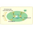 汇精防霉杀菌材料 纳米银钛复合抗菌剂